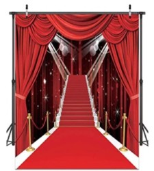 Hollywood Theme Party Decorations Photo Backdrops Red Carpet Backgrounds Vinyl Photography Background Backdrops